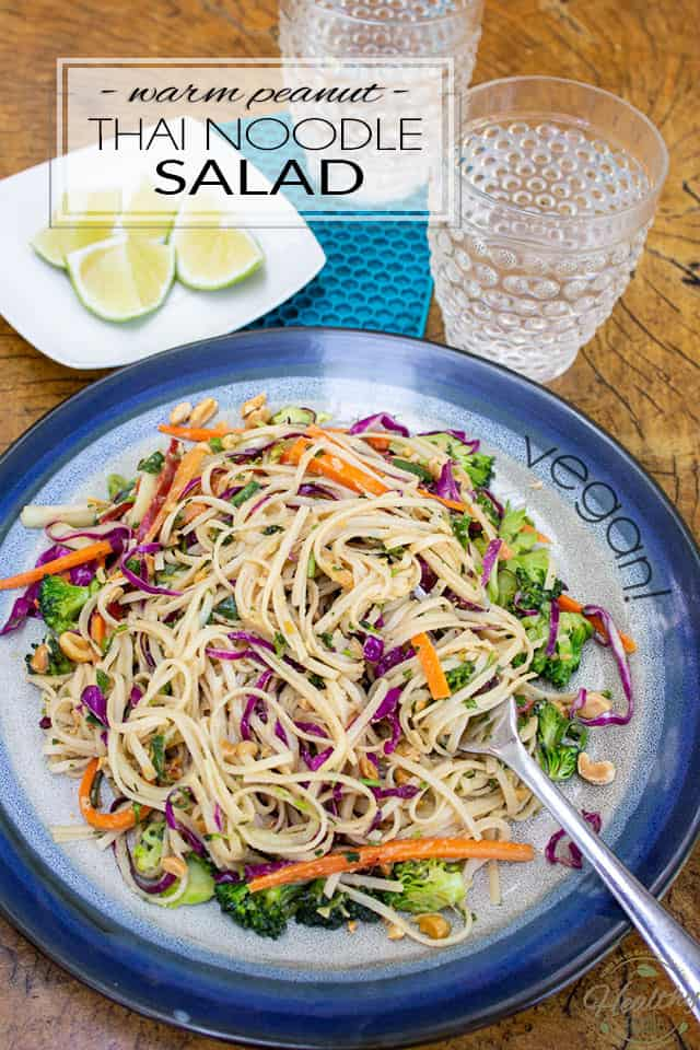 Loaded with wholesome goodness, this Warm Peanut Thai Noodle Salad is an unpretentious dish that is crazy easy to make, yet so generously tasty, it'll just as easily become a family favorite!